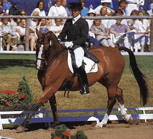 Monthly Dressage Clinics